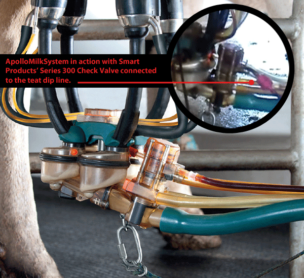 check valve connected to the dip line in automated milking device